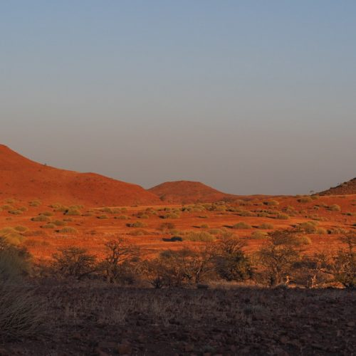 Alba in Africa, Damaraland