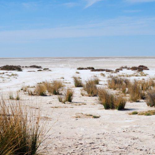 Etosha Lookout, Namibia