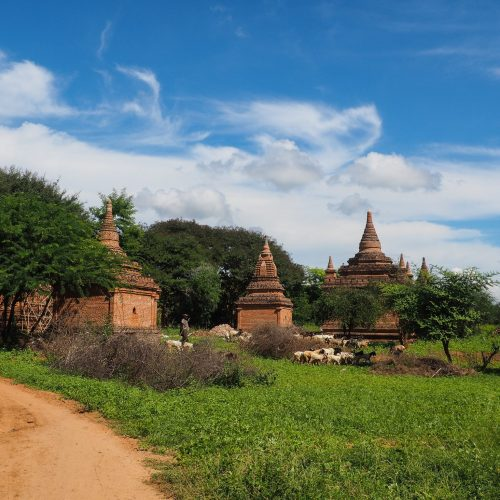 Pastori a Bagan, Myanmar