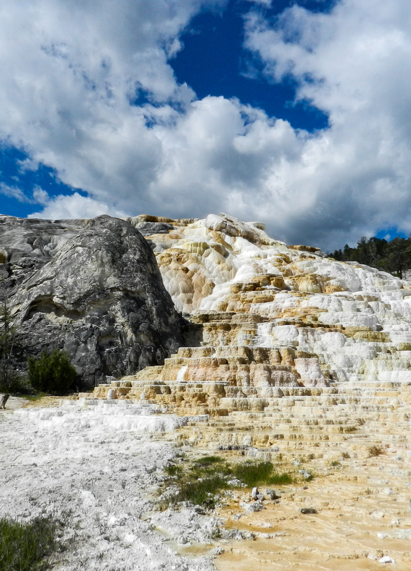 Mammoth Hot Spring - Yellowstone